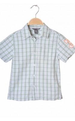 Camasa cu maneca scurta H&M, 3-4 ani