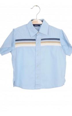 Camasa Zara, 12 luni